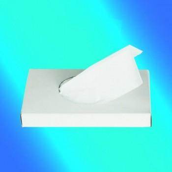 BOLSA HIGIENICA COMPRESA PLASTICO (48BOX x 25U = 1200U)
